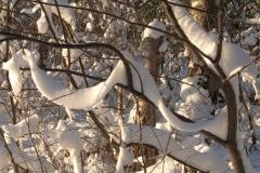 Sneeuwfestoenen (zonnewarmte)
