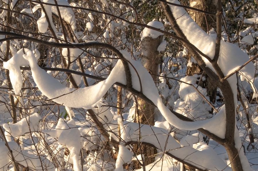 Sneeuwfestoenen in de warme avondzon (feb. 2021)